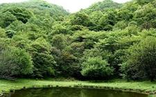 中西部首家林业部门监察室今日在巫溪正式揭牌