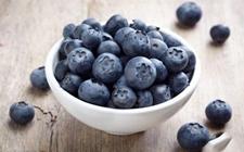 <b>南非蓝莓产业发展迅速 2017/18年预期出口将翻番</b>