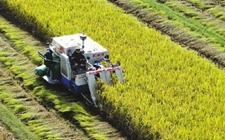 用互联网思维 改造传统农业