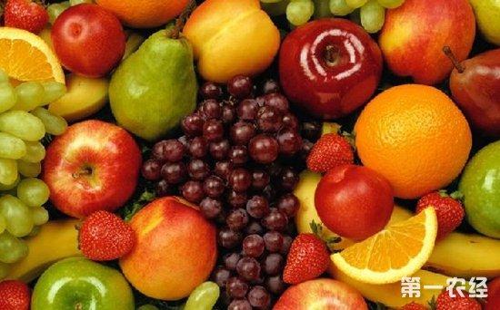 太原丈子头市场:气温下降水果价格呈小幅度上涨