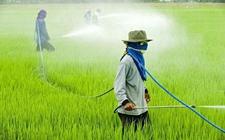 新型纳米控释农药问世 减少农业面源污染