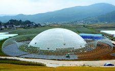 农业部叶贞琴:龙头企业要在促进农业农村现代化建设中勇当排头兵