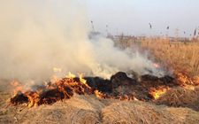 江西环保厅对秸秆焚烧点的负责人进行约谈