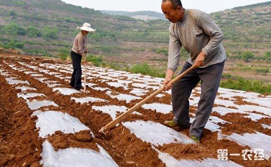 农村地膜回收有补贴 能够以旧换新