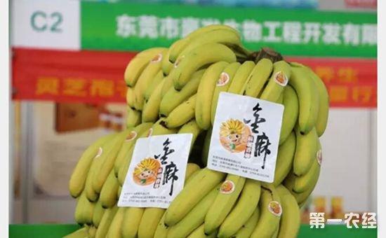 广东省农业厅对获得2017年广东省名牌产品的生产企业予以通报表彰