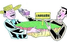 """土地承包期顺延30年 """"把农民当上帝""""成农资新常态"""