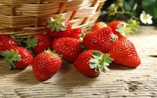 """<b>阿联酋宣布""""太空农业计划"""":或在火星种草莓</b>"""