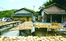 广东省安排奖补资金313亿元 对省定贫困村新农村示范创建工作予以奖补