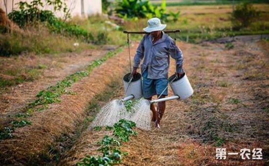 我国的土壤修复产业仍在起步阶段 未来有望达到万亿规模