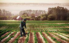 农业部在北京召开耕地轮作休耕制度试点推进落实会