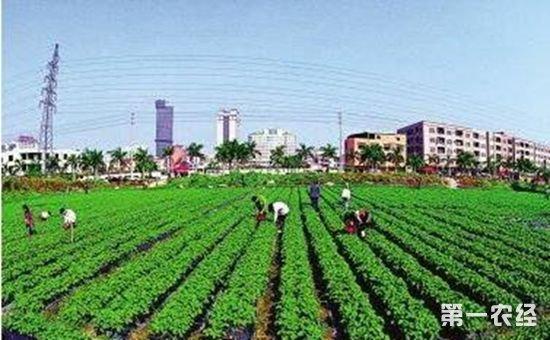 解读土地新政策:要如何获得土地?