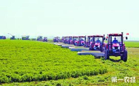 我国农业供给体系的质量和效益进一步提高 为乡村振兴提供了产业支撑