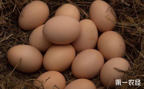2017年11月30日全国各地区最新鸡蛋价格走势分析
