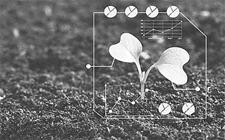 <b>农业科学家许世卫:大数据如何监测管理现代农业?</b>