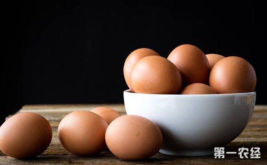 2017年12月1日全国各地区最新鸡蛋价格走势分析