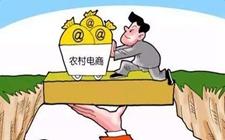 """忠县黄金镇:21万元补助规范化""""网上集市"""""""