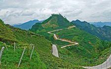 贵州拟发展特色农业 产业扶贫迈上新台阶