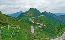 <b>贵州拟发展特色农业 产业扶贫迈上新台阶</b>