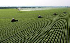 """湖北:紧扣三个面向""""联姻""""农业企业 形成了双赢共利局面"""