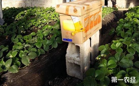 2017年国家食品安全城市和农产品质量安全县创建工作现场会召开