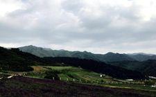 青海省积极将乡村山水资源转化为旅游资源 推进全省脱贫