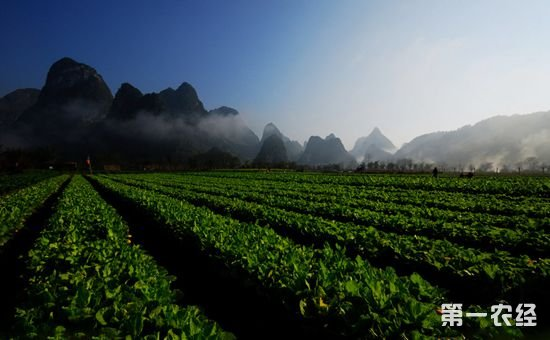 转变观念走循环农业之路 加快生态农业发展助推乡村振兴