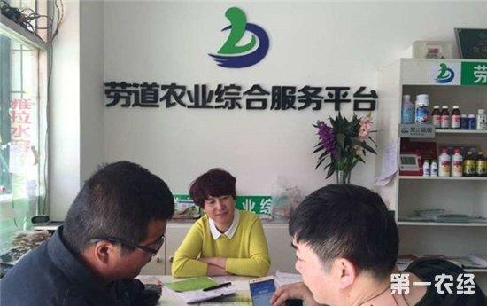 新疆举办首届农资电商节 签署60亿元农产品销售订单