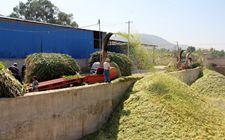 湖北荆门市:秸秆形成绿色新产业