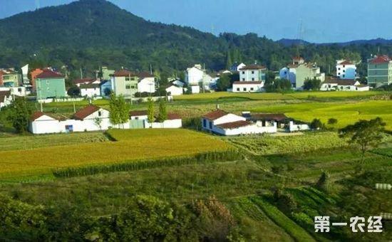 城镇居民能购买农村土地使用权吗?要如何购买?