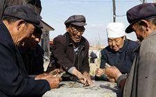 全国多地尝试把社会力量和政府力量相结合 构建农村养老模式