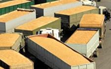 <b>俄罗斯小麦出口需求强劲 年谷物出口量或创新纪录</b>