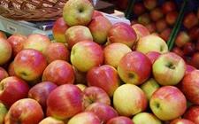 印度缺乏高品质苹果 多从波兰等欧洲国家进口