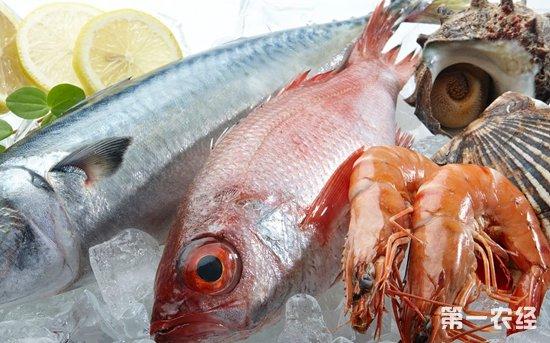 江苏凌家塘淡水鱼和虾类价格回落