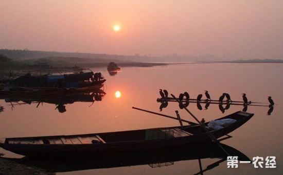 """湖南省从明年起实施""""三年行动计划"""" 大力整治洞庭湖区农业生态"""