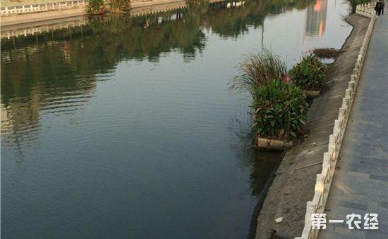 水利部:我国全面推行河长制总体进展顺利