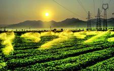 农业专家柯炳生谈我国农业绿色发展