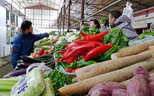乌鲁木齐市今冬气温偏高 蔬菜价格下降