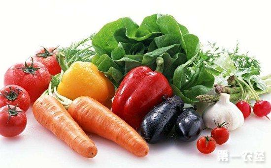 山西长治紫坊一周蔬菜行情分析