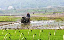 农业部下发《农业农村资源等监测统计经费项目资金管理办法》