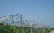 上海市金山区推进农业供给侧结构性改革 促进农村产业融合发展