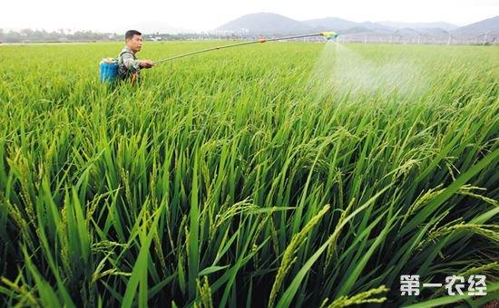 今后农药管理工作将从哪些方面重点发力?