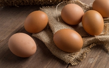 2017年12月8日全国各地区最新鸡蛋价格走势分析