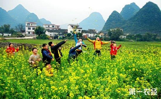 """安徽省休宁县走上一条""""休闲农业+乡村旅游""""的农旅融合发展新路"""