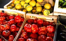 <b>意大利蔬果积极参展开拓中国市场</b>