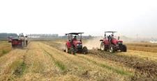 河南耕地面积比2009年土地调查相比实现净增7.61万亩