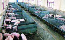 <b>养殖场关闭禁养拆迁补偿标准是如何算的?专业律师告诉你答案</b>