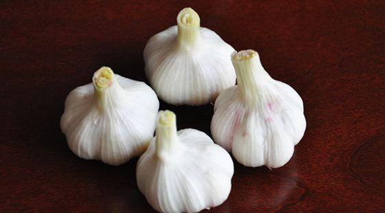 农业部发布全国重要批发市场的蔬菜价格 大蒜价格较去年同期下跌7.9%