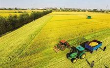 我国力争到2021年底基本完成农村集体产权制度改革