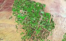 <b>阿拉伯世界沙漠化加剧 水源危机难以缓解</b>
