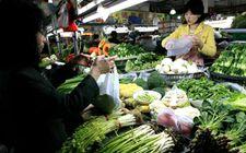 <b>11月份甘肃省粮油价格略有上涨 菜价格呈季节性波动态势</b>